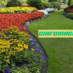 Manutenzioni giardini e aree verdi
