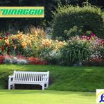 Cura e manutenzione giardini